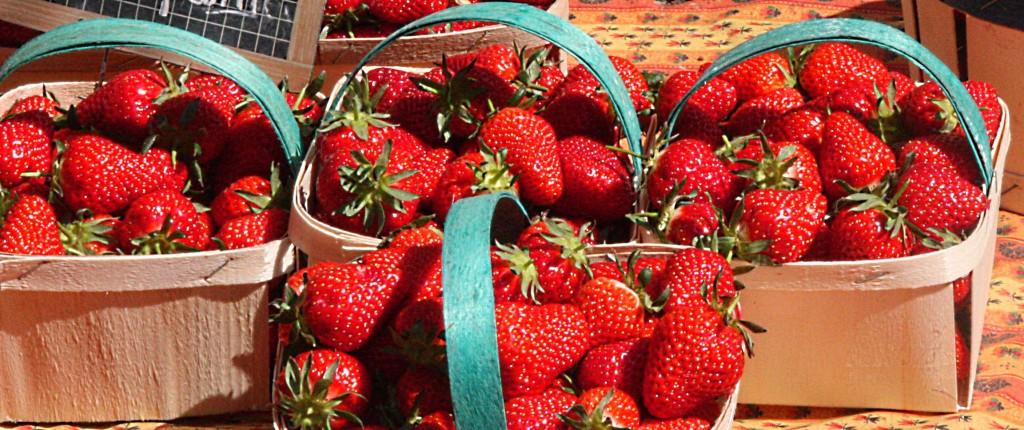 fraise1titre
