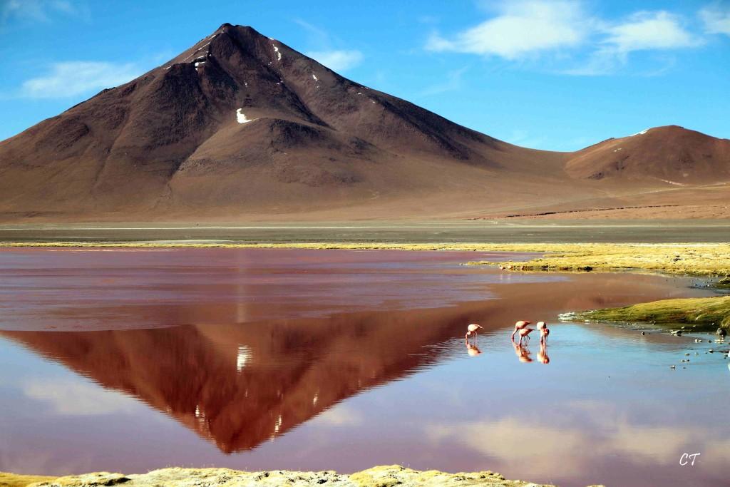2017-08-06au29 Perou Bolivie 0634