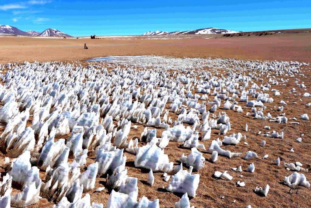 2017-08-06au29 Perou Bolivie 0644