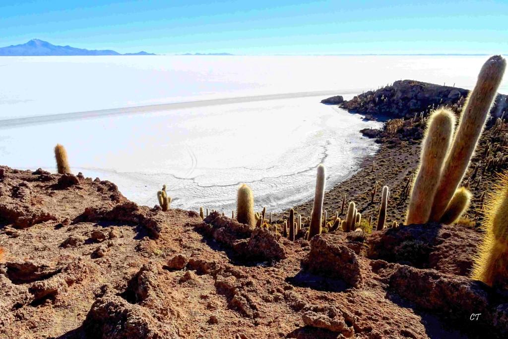 2017-08-06au29 Perou Bolivie 0770